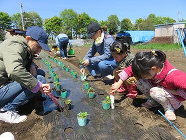 地球農園体験