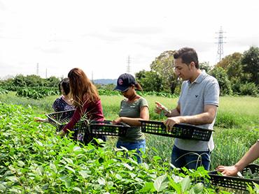 留学生の収穫体験