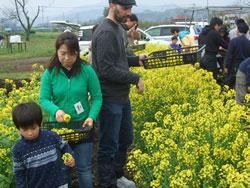 アクセンチュア援農ボランティア